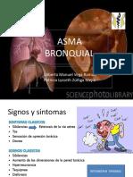 asmalyss-090405124915-phpapp01.pdf