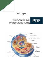 κυτταρο