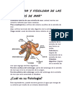 ANATOMIA Y FISIOLOGIA ANIMAL.docx