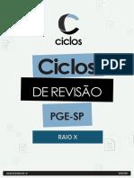 RAIO X - PGE-SP