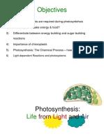 Photosynthesis HBC 201