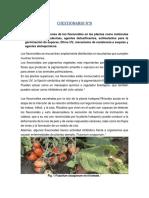 cuestionario N° 8 flavonoides