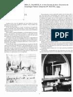 BARBA, Eugênio e SAVARESE, Nicola - Verbete Dramaturgia (de A arte secreta do ator).pdf