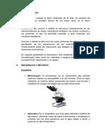 Bioquímica lab nº 1.docx