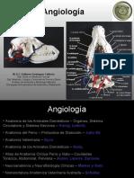 Angiología Clases