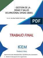 TRABAJO FINAL - Gestión de La Seguridad y Salud Ocupacional OHSAS 18001