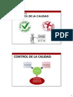 Principales Controles Del Proyecto parte 04