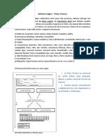 HERBARIO MÍSTICO.pdf
