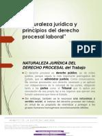 Naturaleza jur+¡dica y principios del derecho procesal EXPOSICION MINJUS