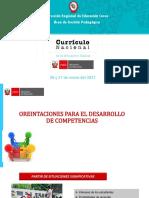 ORIENTACIONES_PEDAGOGICAS_PARA_DESARROLLAR_COMPETENCIAS.pptx