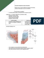 Disfonías orgánicas de base funcional