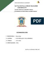 INFORME-N1-sedimentación.docx