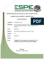 Comprobar Los Mecanismos Que Intervienen en El Transporte de Agua a Traves Del Xilema