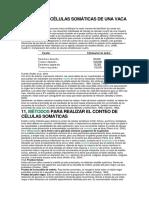 celulas-somaticas