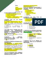 Examen-Yacimientos
