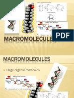 Macromolecules Report (G ABONITA)