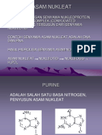 ASAM-NUKLEAT.ppt