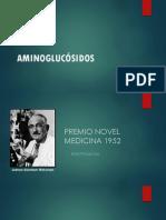 Aminoglucósidos V