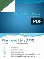 Diaphragma Injury