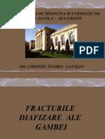 NICOLESCU Fr. Diafiza Tibie