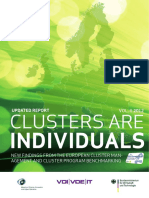 Clusters are Individuals- Volume II - Annex.pdf