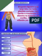 aparato-digestivo-40789-17450.pdf