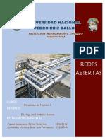 Redes Abiertas- Español(Grupo 2)