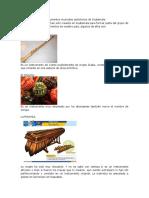 Instrumentos Autóctonos de Guatemal1 SIII