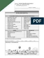 FICHA DESCRIPTIVA 1.pdf