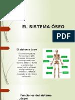 EL SISTEMA ÓSEO.pptx