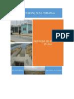 333038972-informe-poechos.docx
