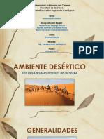AMBIENTE DESERTICO