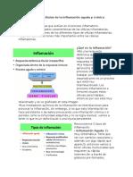 Celulas de La Inflamacion Aguda y Cronica