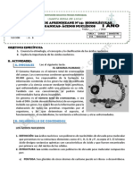 MODULO N°15-BIOMOLÉCULAS -ORGÁNICAS-ÁCIDOS NUCLEICOS (1)