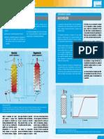 absorption_spanish.pdf