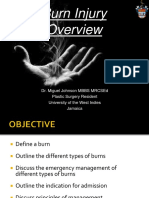 Burns Overview