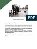 Los Elefantes de Circo y La Limitación