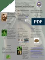Interes de las antraquinonas como laxantes.pdf