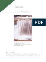 LA_GRAN_CUENCA_DEL_ORINOCO.pdf
