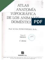 Anatomia tomo 2 Popesko.pdf