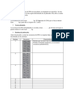 Parámetros-iniciales.docx
