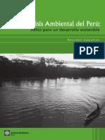 Resumen_Ejecutivo_FINAL_publicado_corregido_Junio_11 (2).pdf