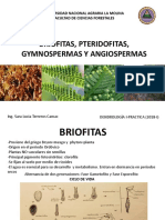1.Briofitas,Pteridofitas,Gymnospermas,Angiospermas DENDROLOGIA I