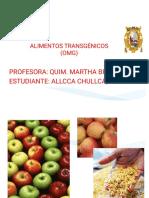 TRANSGENICOS UNMSM.pdf