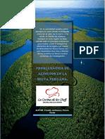 Problemática de Los Productos Nativos de La Selva Peruana