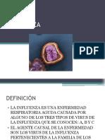 influenzamajo-120126203024-phpapp02