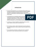 Info Quimica Hidrocarburos