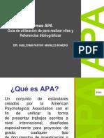 FINAL APA MORALES.pdf
