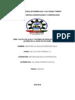 152748591 Informe Cultivo Del Cacao