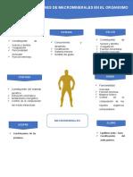 PRINCIPALES FUNCIONES DE MACROMINERALES EN EL ORGANISMO